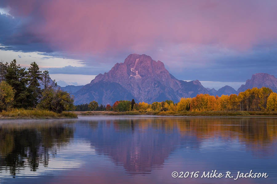 Oxbow in Pink